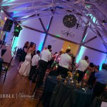 WEB - Voli Wedding Edits (166)